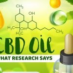 CBD Oil: What Research says
